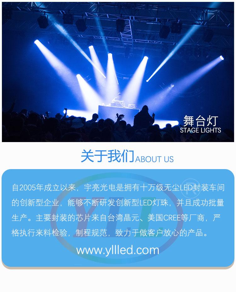 YZ1SS_08.jpg